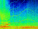 spectrogram of a recording of Springer (A73)